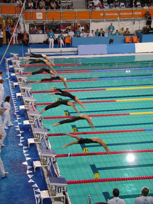 article what are the rules for competitive swimming