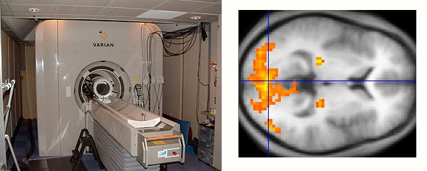fMRI scanner and brain activity