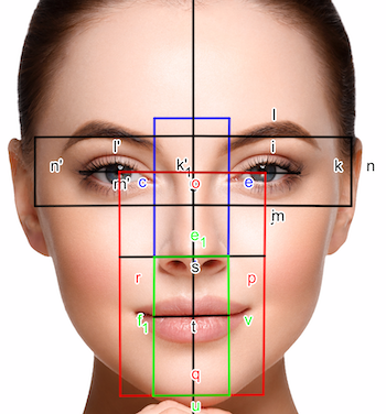 golden ratio superimposed on a face