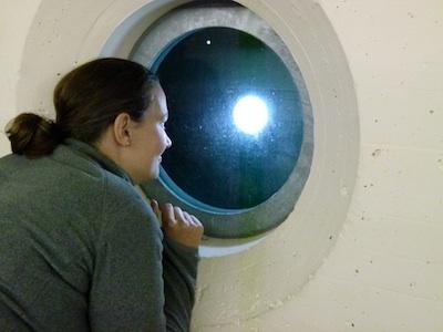 In the bunker in Switzerland