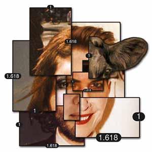 composite face