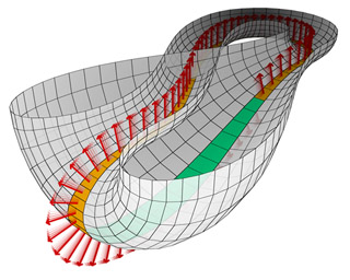 Half of a Klein bottle with Möbius strip