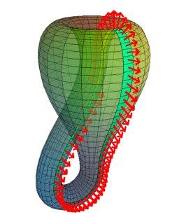Imaging maths - Inside the Klein bottle | plus maths org
