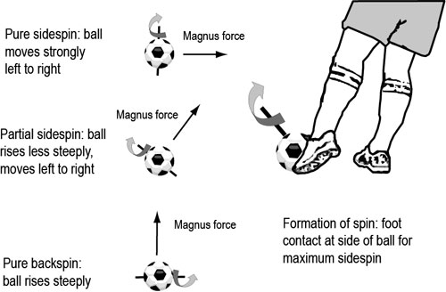 essay on how to kick a soccer ball Essay on effective ways to kick a soccer ball - imagining myself as a high school soccer coach, i would like to optimize my team's kicking performance.