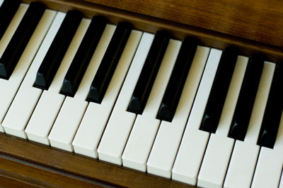 Piano keyboard showing octave