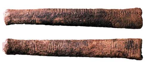 The Ishango bone