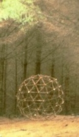 Figure 9: Detail from Fir Sphere