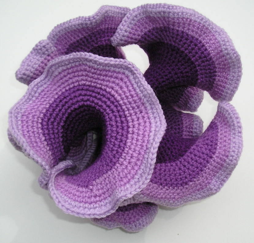 Crocheted hyperbolic surface by mathematician Daina Taimina.