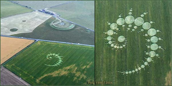 The Julia set crop circle. Image courtesy The Crop Circle Connector (cropcircleconnector.com).