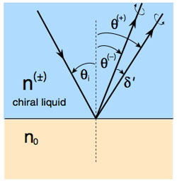 Light is split on reflection in a chiral liquid
